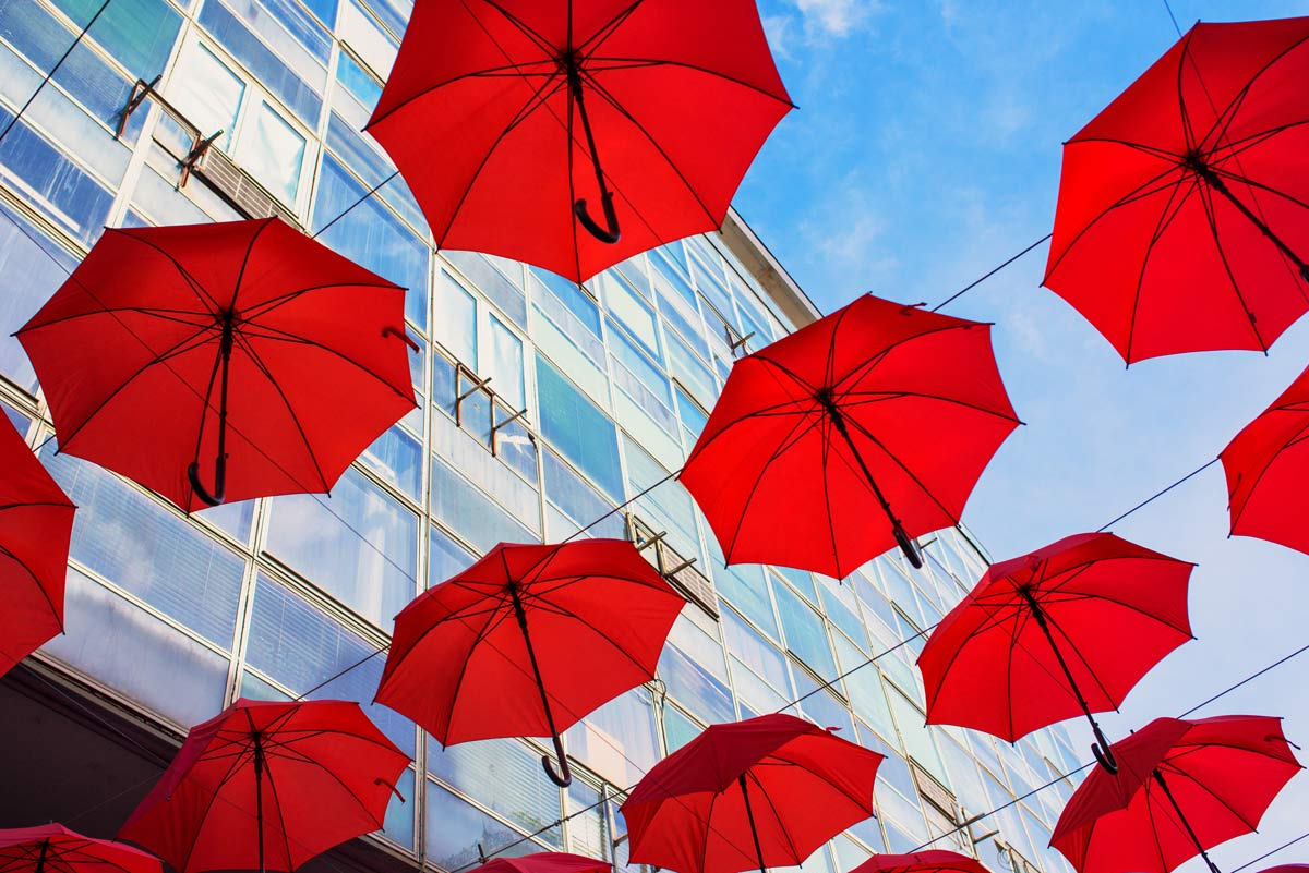 Umbrellas representing the pewaukee umbrella policies you need.